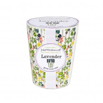 Grow Your Own Lavender Pot