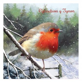 rufus the robin bi-lingual cancer research uk christmas card